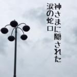 IMG_6598